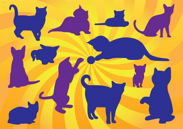 Kitten Vectors with sunset background