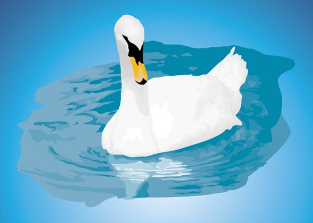 Mute Swan and shadow Vector showing your Valentine