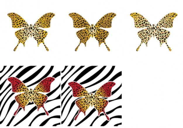 pattern with Butterfly Leopard Zebra shell Vector