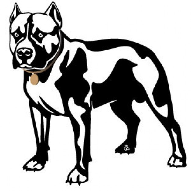 Pit Bull with hunting pose Vector Image