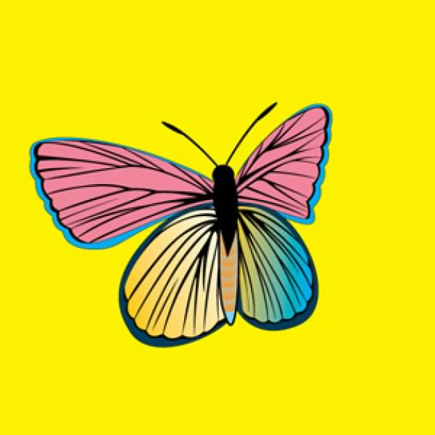 PM Butterfly over yellow background