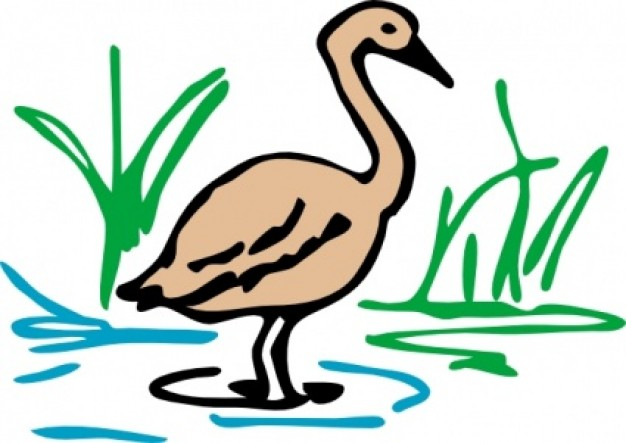 pond clip art with green grass at back