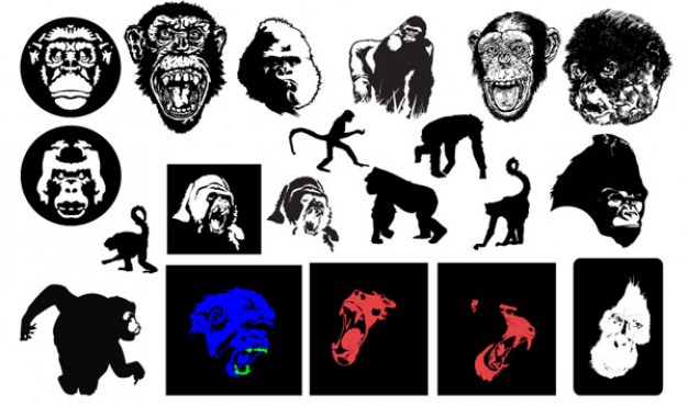 roaring gorillas and monkeys vector material by gomedia