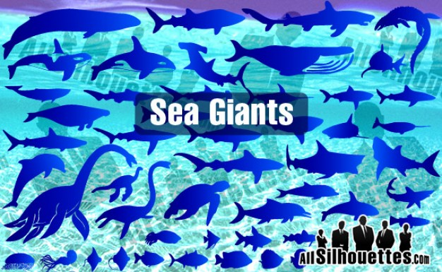 Sea animals from Ocean Giants with blue water background