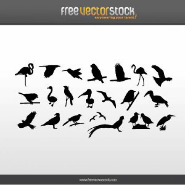 Shield Banner silhouette Collection with variety of birds