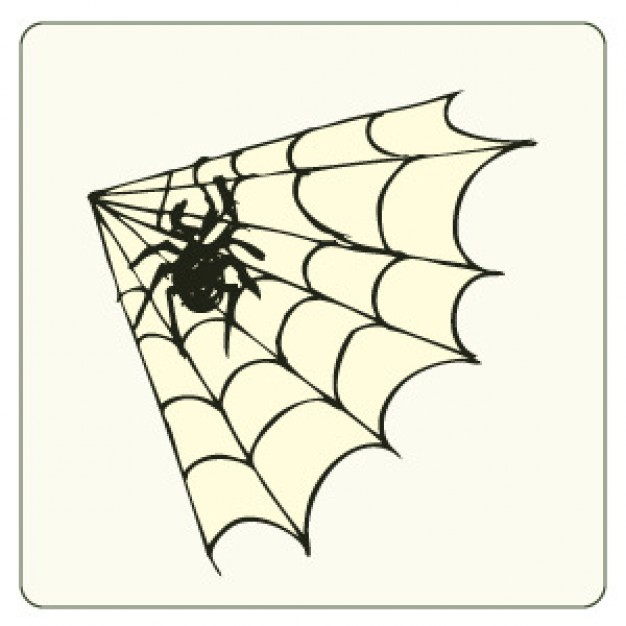 Spider and web vector with white background