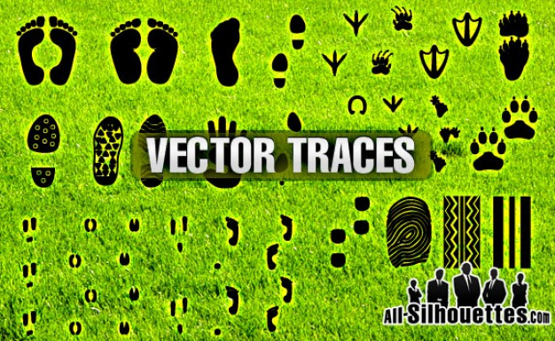 Traces Vector with footprint of bear people worm shoe animal