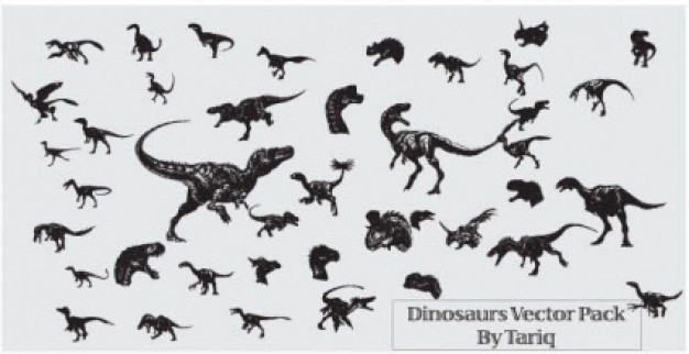 variety of dinosaurs dragon Animals