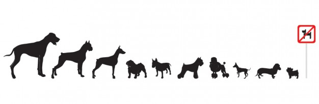 variety of Dogs silhouette Vector