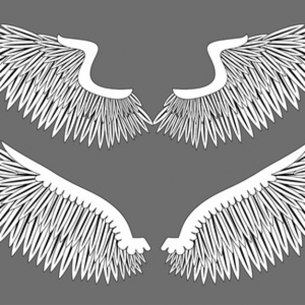 wings tattoo Illustrator design vector in black and white