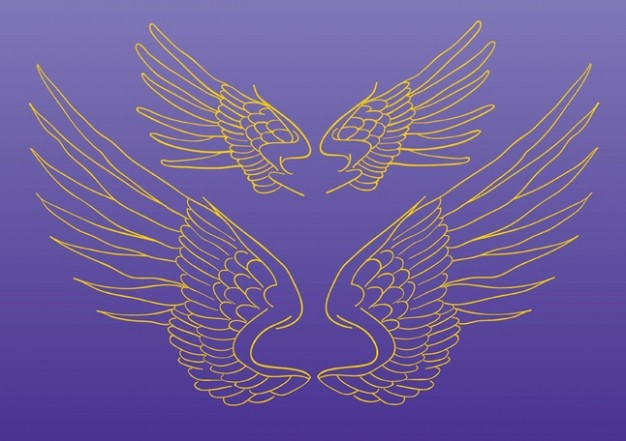 Wings Vector Drawing over purple background