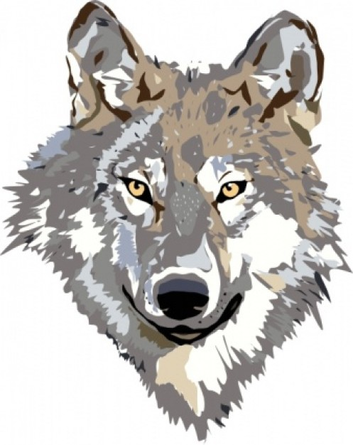 Wolf head in front view clip art