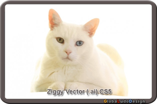 ziggy cat looking at you vector in white frame