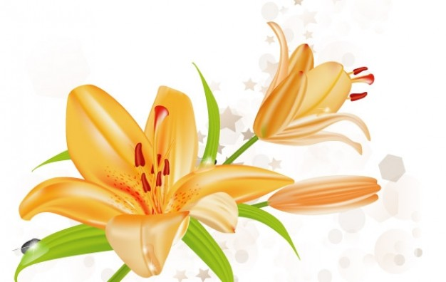 Flower lily Shopping illustration about Valentine's Day Dried and Preserved