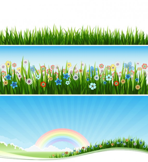 Landscape landscape rainbow and grass flowers banner about Cornflower Pear