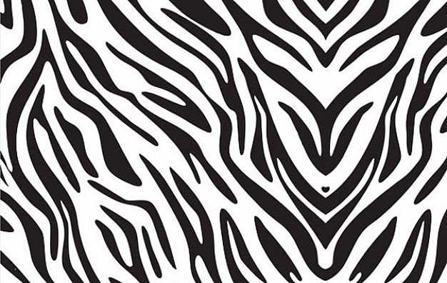 Zebra shell pattern print about Species Health
