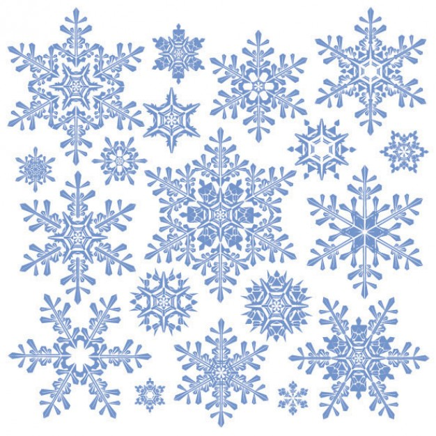 Christmas Snowflake variety of snowflake material about winter elements