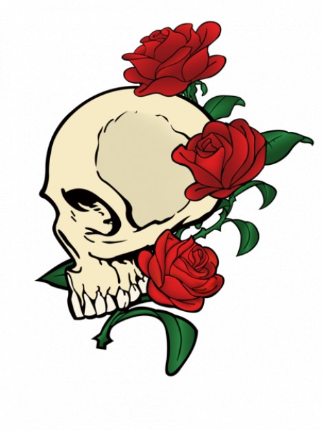 Gardens skull Plants with red rose background about Roses Shrubs