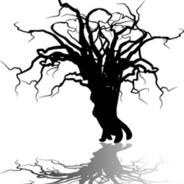 art black Photography white tree shadow about halloween Photographers