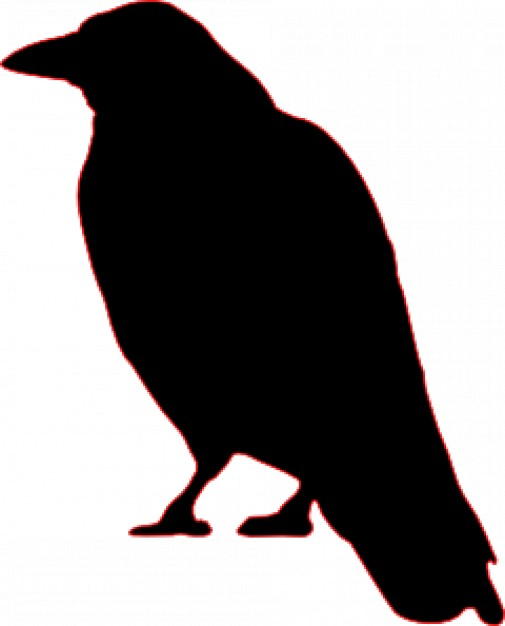 crow halloween silhouette with white background