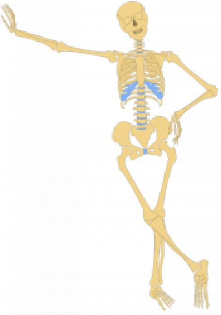 earth yellow human skeleton outline standing at wall