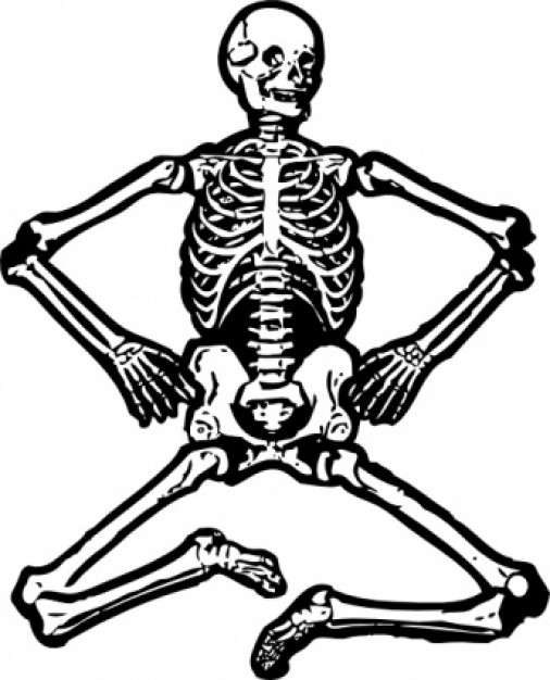 human skeleton sitting pose clip art with white background