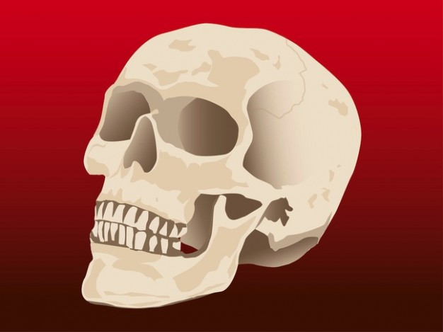 Human skull dead  skelton with red background about Catholic Church Health