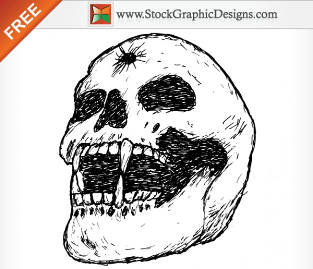 human skull image drawn by hand