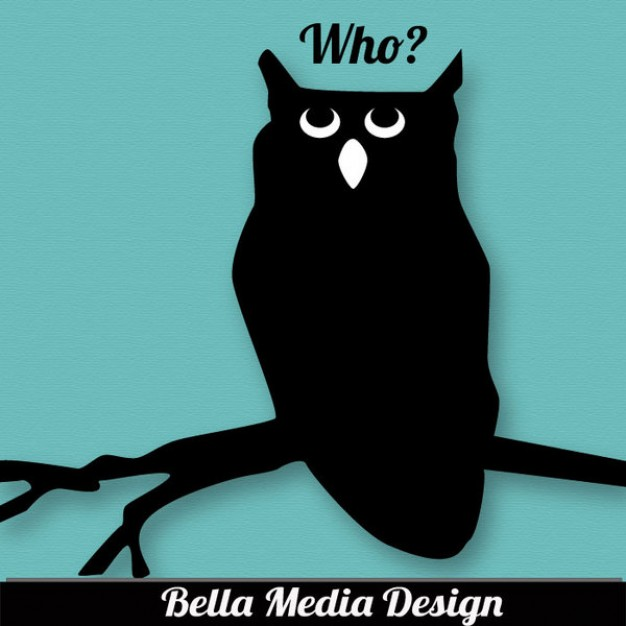 Ironside who Don Mitchell owl with blue branch background