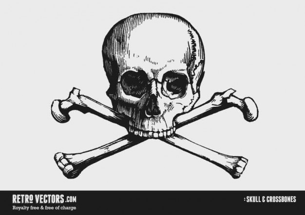 Piracy skull Maritime cross bones with grey background about History Skull and Bones