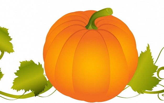 Pumpkin Fruit and Vegetable graphic with background about Cooking Home