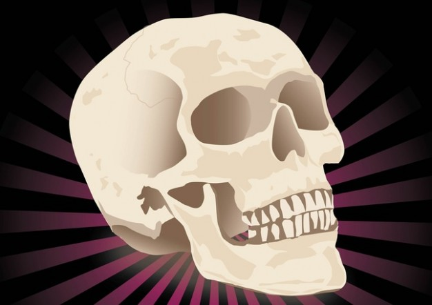 realistic skull with dark radiant background