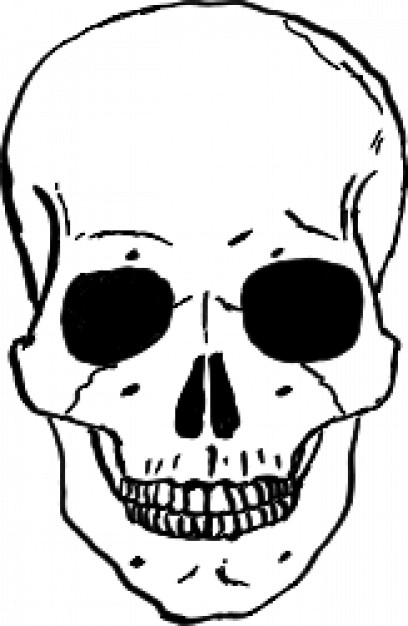 skull in front view with dark eyes socket