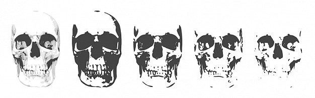skull layers in different deep