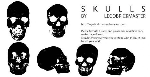 skull types vectors with different angel view