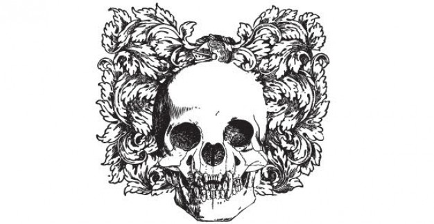 skull with ornaments and leaves Floral at back