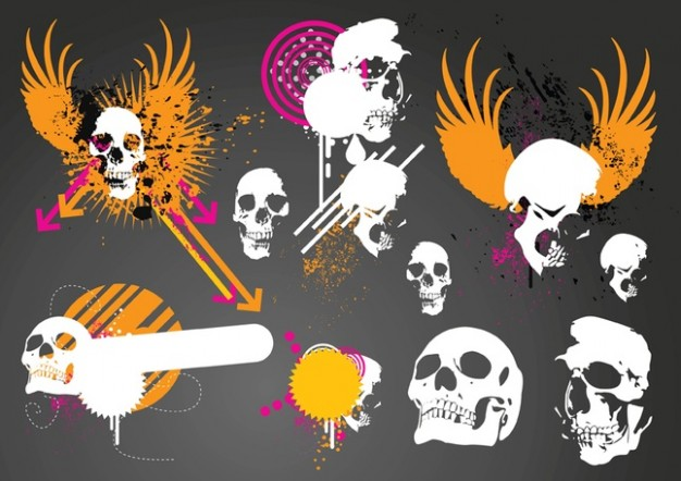 skulls with orange wings graphics over grey background