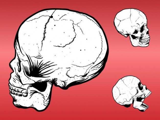 white three skulls with red background